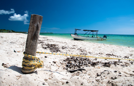 Seashore in Cozumel Stock Photo