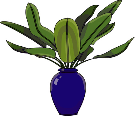 Vector illustration of a ornamental house plant with huge green leaves in a blue pot.