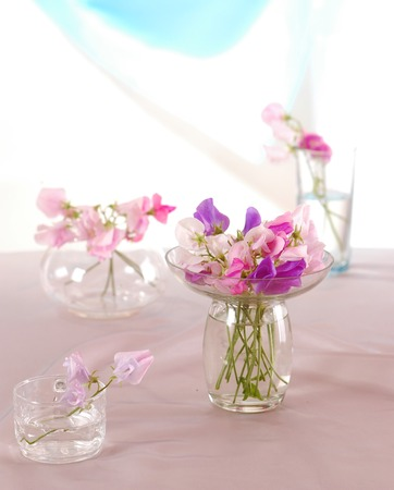 detailed shot: Bouquet of beautiful sweet peas flowers, a studio photo Stock Photo