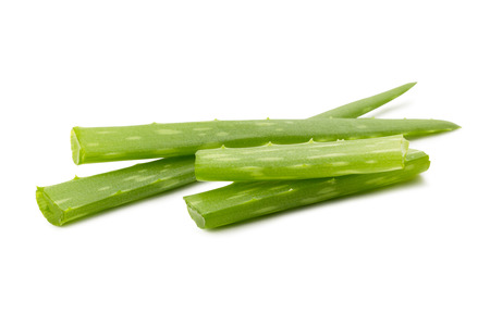 Aloe vera slices - ingredients for cosmetic and medicine industry