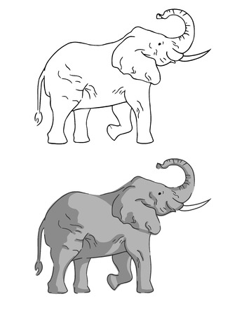 Two elephants on white background drawn by simple style.