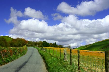 cumulus: Uphill road in the countryside with flower filled fields and a blue sky with cumulus clouds