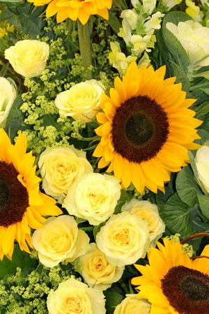 An arrangement in yellow, of sunflowers, roses, antirrhinums and ladies mantle.