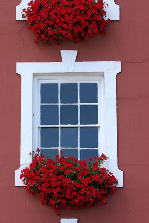 Red flowers in window boxes beneath white windows on the front of a house. photo