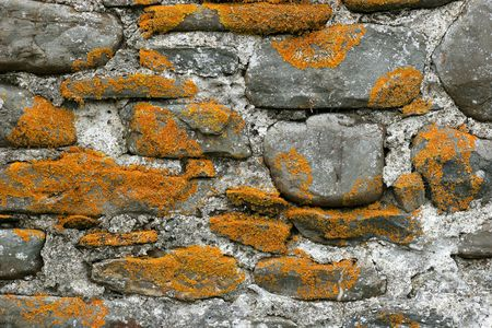 Old stone wall covered on moss. photo
