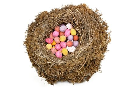 Natural bird nest filled with multi colored eggs against a white background.. Stock Photo - 326597