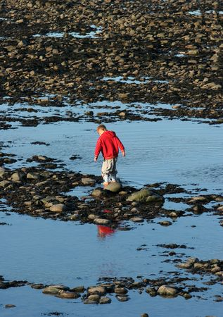 Little boy playing alone  in a rock pool on a beach of pebbles,  pools and seaweed. photo
