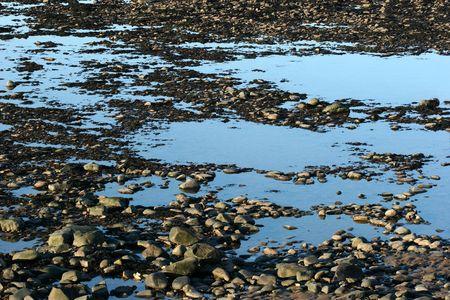 Rock pools on a beach photo