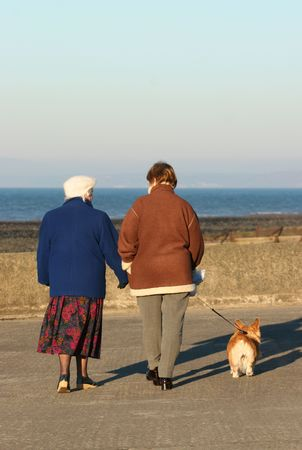 younger: Elderly female with a younger female walking a dog on a seaside promenade.