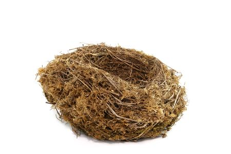 Natural birds nest against a white background. Stock Photo - 326142