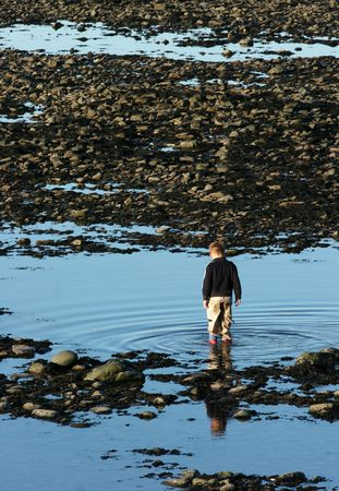 Young boy paddling in blue pools of water on a beach of pebbles and seaweed. photo