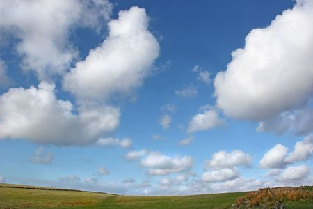 Sky with alto cumulus clouds above a hillside of grass, reeds, a fence and sheep grazing in Spring