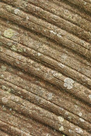 pitted: Diagonal pietra ridged curve coperti nel muschio e snocciolate.
