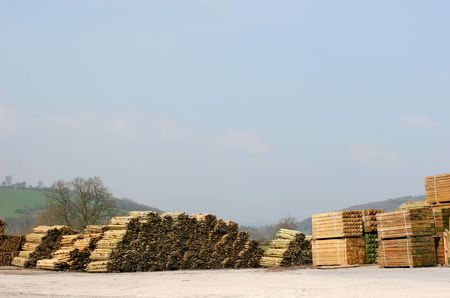unsustainable: Stacked pine timber in a lumber yard with a pale blue sky and rural countryside to the rear. Stock Photo