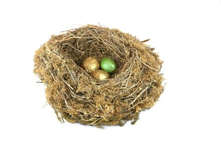 One green egg and two gold eggs in a natural birds nest, against a white background. The green egg symbolising environmental investment for the future. photo