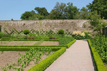 Pathway through a walled garden, with vegetable and flower beds bordered by clipped low hedges. Set against a blue sky and trees to the rear.