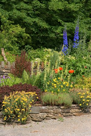 walling: Cottage garden in early summer with a large  variety of different types of flowers and plants.