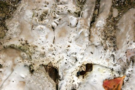 solidify: Limestone deposits, formed by direct crystallization from water.