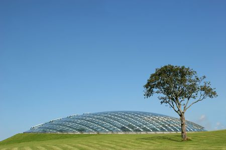joists: Futuristic conservatory dome made of glass panels and steel joists and set into a grass hillside with a tree to one side. Clear blue sky to the rear. Stock Photo