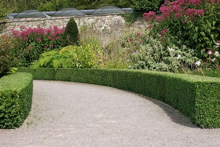either: Curved garden path with clipped hedging either side and flowers and shrubs beyond.