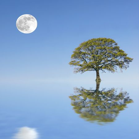 Fantasy abstract of a partially submerged oak tree in summer set against a background of a full moon and blue sky, reflected over water.
