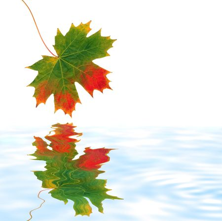 Abstract of a maple leaf with the colors of Autumn reflected over soflty rippled pale blue water. Set against a white background. Stock Photo - 2850813