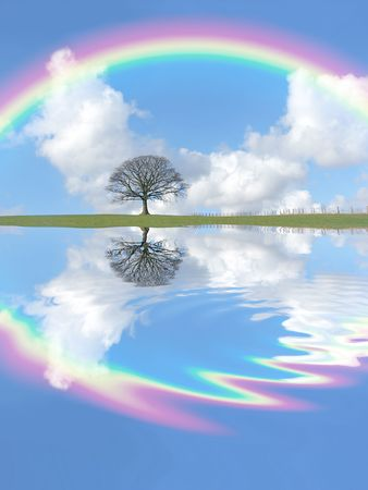 Abstract of an oak tree in winter standing  on an area of grass, with reflection in rippled water. Set against a blue sky with cumulus clouds and a rainbow. Stock Photo - 2901498