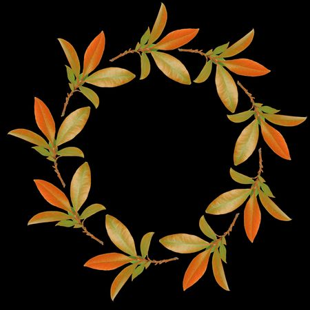 black wreath: Abstract circular design of a garland of bay leaves in the colors of autumn forming a border and set against a black background.