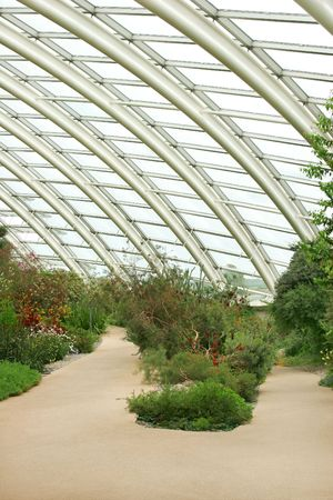 Conservatory interior showing the arched metal girder roof design, with a path, flowers and plants to the forgeround.