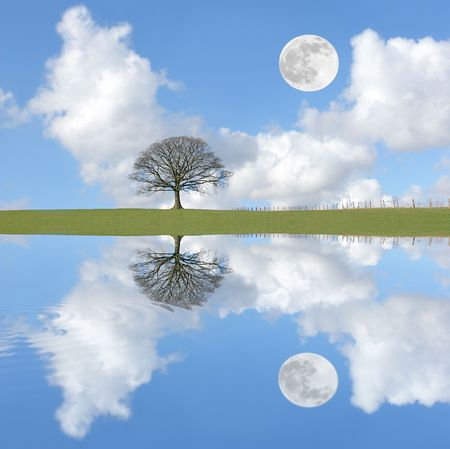Abstract of an oak tree in winter on an area of grass, with a blue sky, cumulus clouds and a daylight full moon with reflection in rippled water.