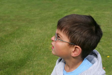 poor eyesight: Face of a little boy wearing glasses, with a puzzled look on his face. Grass (out of focus) in the background. Stock Photo