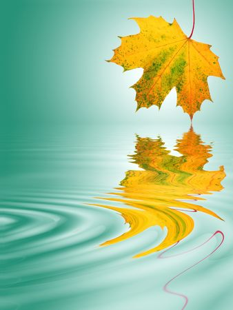 Abstract of a maple leaf in the colors of autumn with reflection over rippled water. Over pastel green background with white central glow. Stock Photo - 3487603