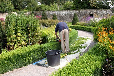giardinieri: Curvo hedge tagliati da un uomo in possesso di un rosso elettrico taglierina murato in un giardino pieno di fiori e piante in estate.