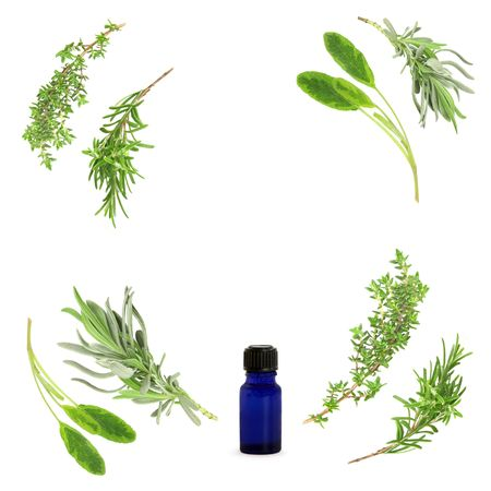 rosemary flower: Abstract circular design of aromatherapy herbs of fresh lavender, sage, rosemary  and thyme with a blue essential oil glass blue bottle. Set against a white background.  Stock Photo