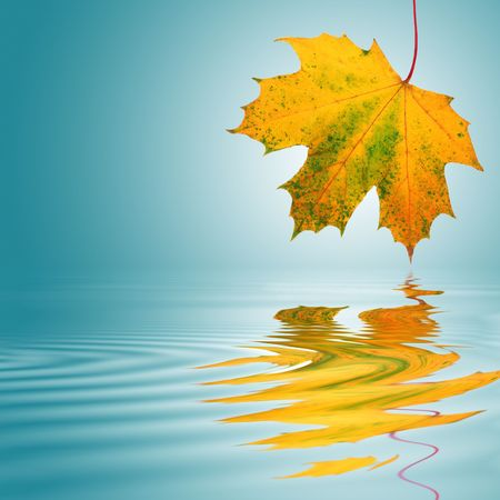 Maple leaf abstract in the colors of autumn with reflection over rippled water. Over a turquoise background with white central glow. photo