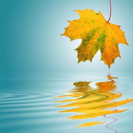 Maple Leaf streszczenie w kolory jesieni z refleksji nad rippled wody. Ponad turkusowy z białym tle centralne poświatę.