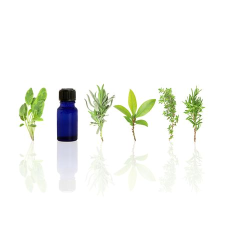 aroma: Herb leaf selection of sage, lavender, bay, common thyme, rosemary and aromatherapy essential glass oil bottle with reflection, over white background. Stock Photo