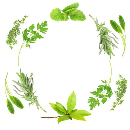 Herb leaf abstract circular design of lavender, sage, parsley, bay, lemon balm and thyme, over white background. photo