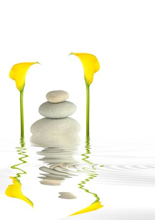 arum: Zen abstract of  grey spa stones and yellow arum lily flowers with reflection over  rippled water, over white background.  Stock Photo