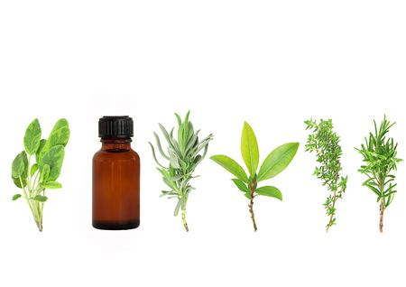 aromatherapy oils: Herb leaf selection of lavender, bay, thyme, sage, and rosemary with an aromatherapy essential oil brown glass bottle, over white background. Stock Photo