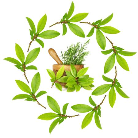 Bay leaf herb garland with pestle and mortar, filled with rosemary with bay leaves. Over a white background. Stock Photo