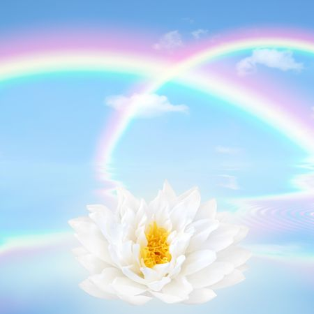 Rainbow fantasy abstract in a blue sky with a white lotus lily flower and reflection over rippled water. Stock Photo