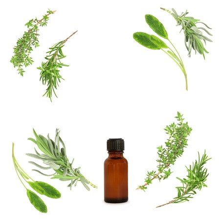 Lavender, sage, rosemary and thyme herbs leaf sprigs in abstract circular design, with aromatherapy  essential oil bottle. Over white background.  photo