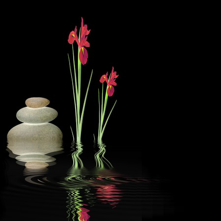 Zen abstract design glowing grey spa stones and red iris flowers with reflection over rippled water. Against black background. Stock Photo