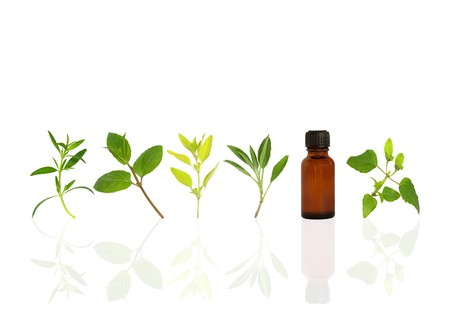 hyssop: Herb leaf sprigs of hyssop, chocolate mint, golden marjoram, sage, and bergamot and an essential oil brown glasss bottle, over white background.