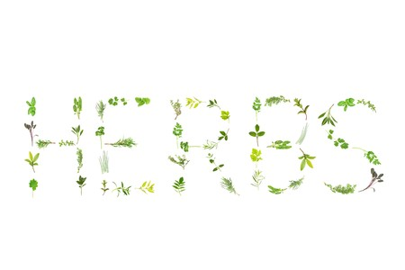 Herb leaf sprigs  forming the word herbs, over white background.  Lavender,  bergamot, marjoram, rosemary, thyme, sage, basil, mint, hyssop, oregano, parsley,   feverfew, comfrey, coriander,chives;tarragon, catmint, lemon balm, spearmint, bay, ladies mant