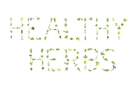 Large selection of herb leaf sprigs, spelling the words healthy herbs, over white background. Stock Photo - 4249794