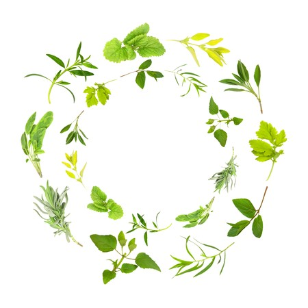 variegated: Herb leaf circles of lemon balm, golden marjoram, sage, feverfew, chocolate mint, tarragon,  bergamot, lavender, variegated sage, hyssop over white background. In clockwise order from top outer circle.