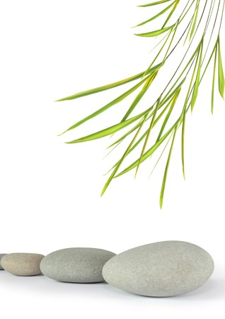 shui: Zen abstract design of grey spa tones in a line with bamboo leaf grass, over white background. Focus on the front stone. Stock Photo