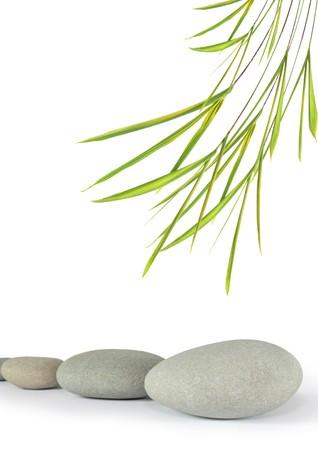 Zen abstrakte Design der grauen Spa werden in einer Zeile mit Bambus Blatt Gras, über weißen Hintergrund. Konzentrieren sich auf der vorderen Stein. Standard-Bild - 4286797